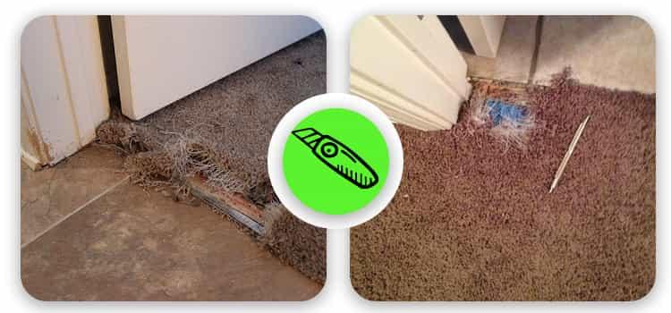 Best Carpet Repair Torquay
